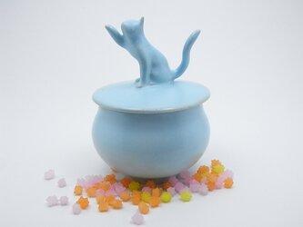 アイスブルー・キャンディーBox・ニャンコー9の画像