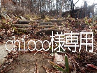 atelier blugra八ヶ岳〜chicco様専用ページの画像