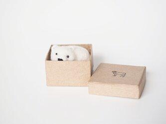 <約3㎝シリーズ>鮭シロクマの画像
