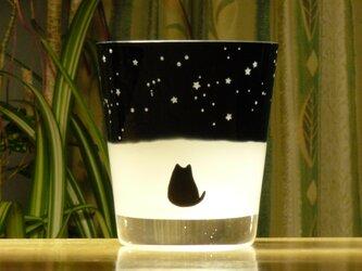 黒猫と冬の星座のフリーグラス  (1個)の画像