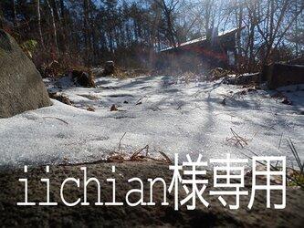 atelier blugra八ヶ岳〜iichian様専用ページの画像