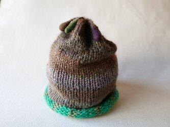 knit cap 「Vitality」の画像