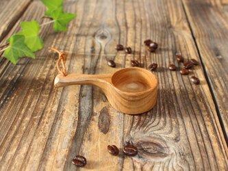 コーヒーメジャーS サクラ古木の画像