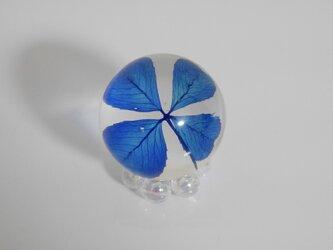 四つ葉ドロップ M (ブルー)の画像