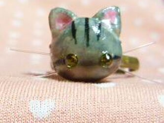 にゃんこのしっぽ〇にゃんリング〇フリーサイズ〇さばとら猫の画像