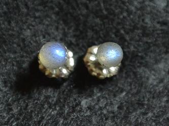 (1点もの)小粒ラブラドライトのスタッドピアス(4mm・チタンポスト)の画像