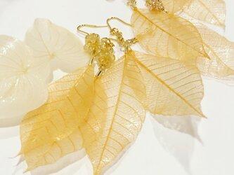 Lihue * スケルトンリーフのピアス ゴールドの画像