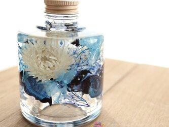 ミニシルバーデイジーのハーバリウム*ブルーの画像