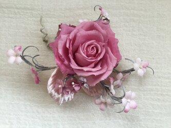 ピンクのチェリッシュの画像
