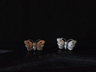 butterfly earringsの画像