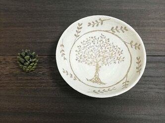 優しい木の画像