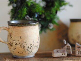 herbal gardenの画像
