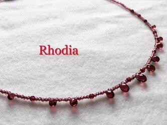 Rhodia(ローディア)の画像