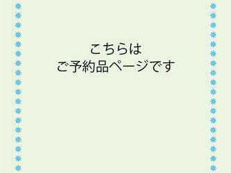 takahi様ご予約品の画像