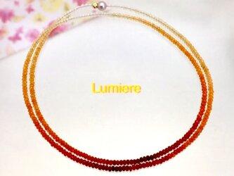 Lumiere(ルミエール)の画像