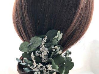 【ユーカリのヘアクリップ/プリザーブドフラワー/髪飾り・ボタニカル】の画像