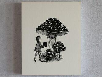 イラストパネル(キノコと少年)の画像