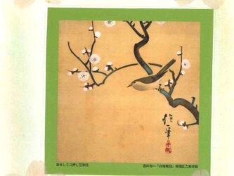 押し花和綴じ帳(白梅鶯)の画像