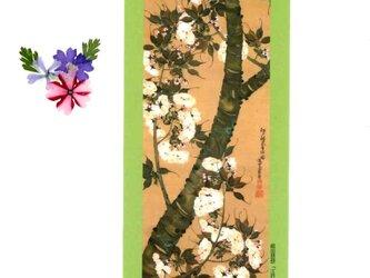 押し花和綴じ帳(江戸法来寺桜)の画像