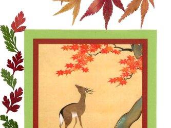 押し花和綴じ帳(紅葉鹿)の画像