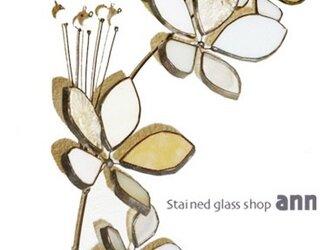 ステンドグラス フラワー190110Wの画像