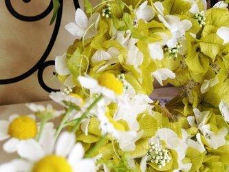 summer wreath・・・★の画像