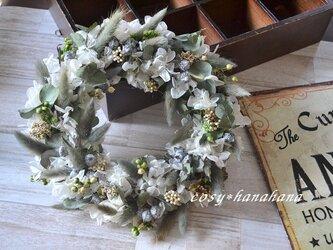 ラグラスとユーカリの実wreathの画像