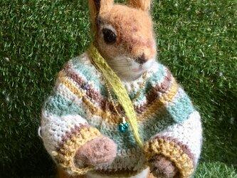 羊毛フェルトのキタリス、ノルディックセーターの画像