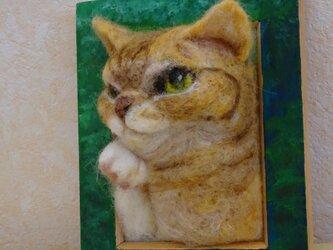 猫の肖像画 茶とらの画像