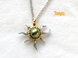 Taiyo(太陽)の画像