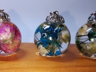 ハーバリウム、ガラスドームにつめての画像