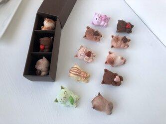選べるチョコレートみたいな猫さんトリオの画像