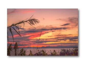 【写真のみ】秋の情景【A4 送料無料 アートフォト】テキスト挿入のオーダー承りますの画像