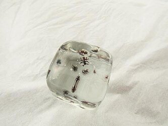 ant cubeの画像