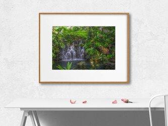 【額装写真】Botanical Garden【A4 アートフォト】テキスト挿入のオーダー承りますの画像