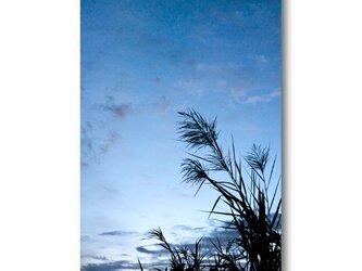【写真のみ】深蒼は初冬に宿る【A4 送料無料 アートフォト】テキスト挿入のオーダー承りますの画像