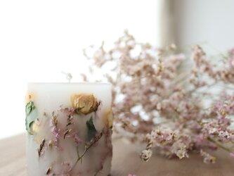 桜色のボタニカルキャンドル*ハイブリッドスターチスとイエローのミニバラの画像