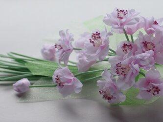 ピンクの桜のコサージュE9の画像
