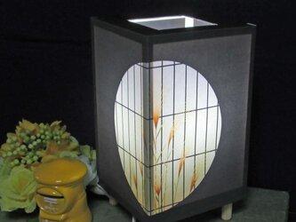夢明かり≪夕べの灯り≫ 紙貼・豆形・LED 飾りライトの醍醐味を!!の画像