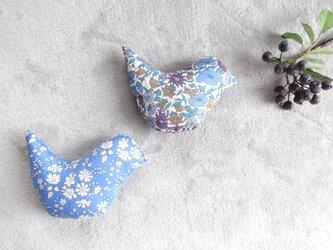 幸せの青い鳥の画像