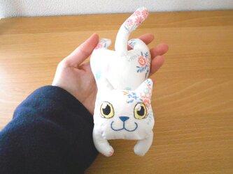 手乗りねこ11・ミルキー白猫ちゃんの画像
