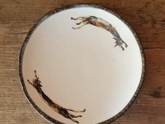 皿(ネコの追いかけっこ)の画像