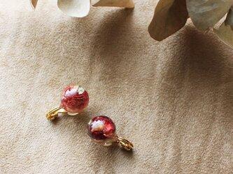 ドライフラワーの花珠イヤリング【a】の画像