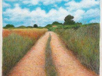 この道の画像