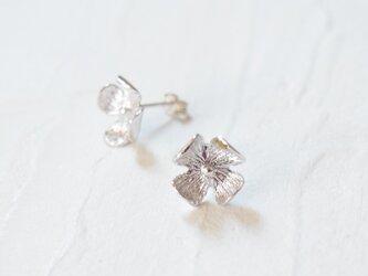 【紫陽花のピアスS】-SAIKA-の画像