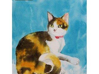 ポストカード選べる4枚セット「猫2・三毛猫」の画像