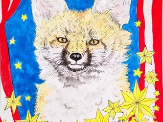 FOX and GECKO~キツネとヤモリ~の画像