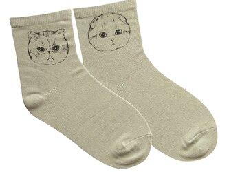 ぼぶずのイラスト靴下【ねこたち】※選べるカラーの画像