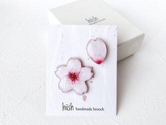 桜と花びらのブローチセット(ボックス入り)の画像