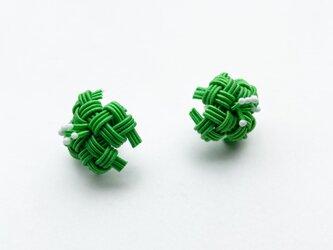 水引花 緑色の画像